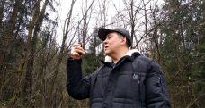 Тест в лесу аналоговых и цифровых радиостанций