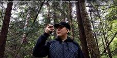 Выбор портативных радиостанций для леса