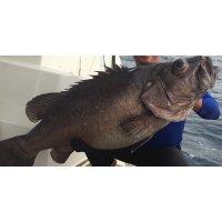 Рации для морской рыбалки