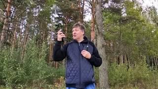 Тест в лесу работы раций Alan 42 DS, Stabo xh9006e и Штурмана
